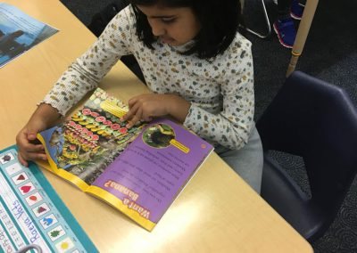 IMG-4630 First Grade